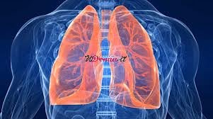 cura polmoni