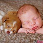 bimbo dorme