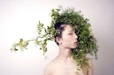 capelli-erbe