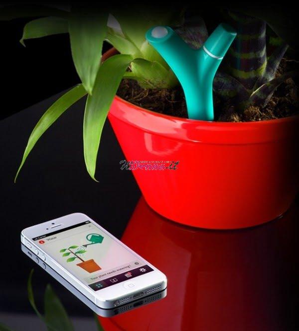 flower power un 39 app per parlare alle piante. Black Bedroom Furniture Sets. Home Design Ideas